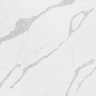 calacatta leon quartz